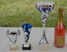 concours-petanque-13-06-15
