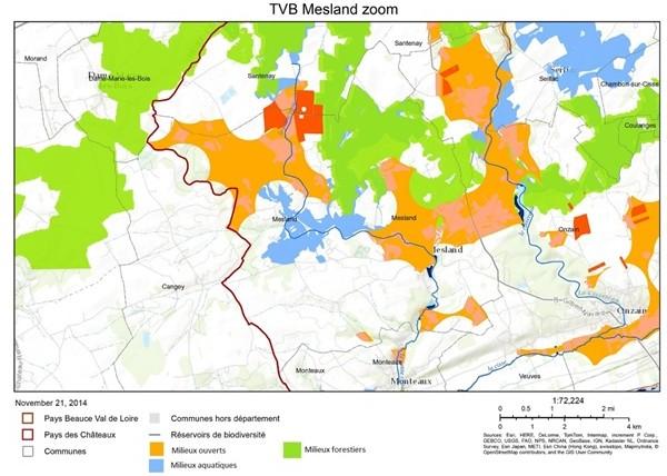 tvb-zoom-sur-mesland-2